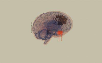 Qué es la PNL (programación neurolingüística) y cómo puede ayudarte